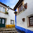 Obidos by Brendan Buckley