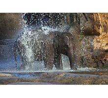 Elephant shower Photographic Print