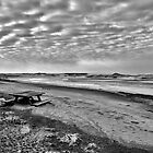 Winter on Presque Isle by Heather  Andrews Kosinski