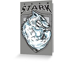 Team Stark Greeting Card