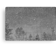 Snow? and 64F? Canvas Print
