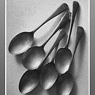 Table Spoons by Glenn Launerts