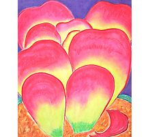 Paddle Plant in Pastel Colors Photographic Print