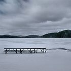 Picnic At Lake Opeongo, Ontario Canada by Allen Lucas