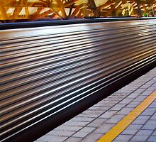 Train 13 03 13 _ Two_Close_Up by Robert Phillips
