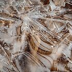 Winter&#x27;s Patterns on the Beach by Robert Kelch, M.D.