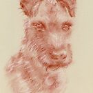 Irish Terrier - original pastel drawing by Paulette Farrell