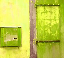 Door & Wall-series (yellow & green) by Tamarra