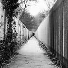 Print - Folkestone Alley by mrparkini
