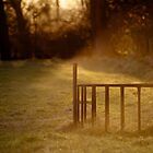 Cattle Feeder in Winter Sunset by Michelle Hardy  Photography