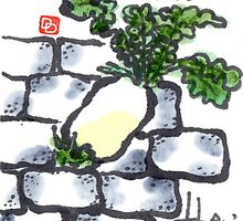 Determination (daikon radish) by dosankodebbie