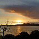 Dunalley Sunset - Dunalley, Tasmania, Australia by PC1134