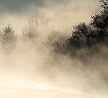 16.3.2013: Cold, Magical Morning I by Petri Volanen