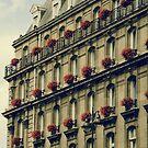 Paris by Louise Fahy