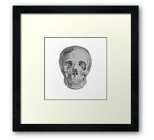 Albinus Skull 04 - Never Seen Before Genius Diamonds  - White Background Framed Print