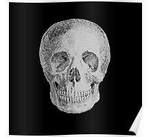 Albinus Skull 04 - Never Seen Before Genius Diamonds - Black Background Poster