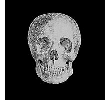 Albinus Skull 04 - Never Seen Before Genius Diamonds - Black Background Photographic Print