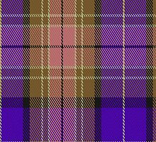 00839 West Coast Woven Mills Fashion Tartan #1893-11 Fabric Print Iphone Case by Detnecs2013