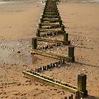 Wave Breakers by Steve Green
