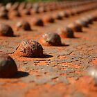 Rusty Rivets by Steve Green