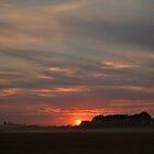 Misty Sunset by Steve Green