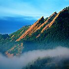 Flatirons And Fog by Gregory J Summers