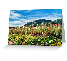 Flowers and Flatirons Greeting Card