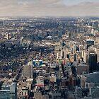 Toronto by nickdeclercq