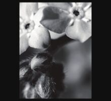 Forget-Me-Nots 6 B&W Kids Clothes