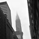 Empire Building by bryaniceman