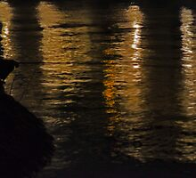 Fishing at Night -- Hanoi -- West Lake by PeachPark