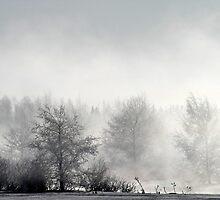 17.3.2013: Winter Morning II by Petri Volanen