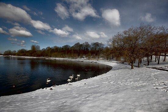 THE WINTER LAKE by leonie7
