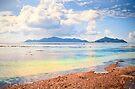 Seychelles. Anse Source d' Argent .La Digue. by terezadelpilar~ art & architecture