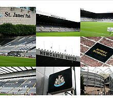 The Magpies Nest ~ Newcastle United by footypix