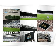 The Magpies Nest ~ Newcastle United Poster