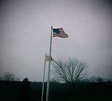American Flag by David  Anderson