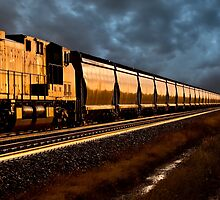 Train at Sunset by pictureguy