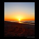 Atlantic Ocean Beach Sunrise Colors - Smith Point Country Park, New York by © Sophie Smith