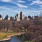 Belvedere Castle View - New York City by Joel Raskin