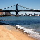 East River Beach - New York City by Joel Raskin