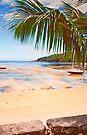 low tide in Seychelles. by terezadelpilar~ art & architecture