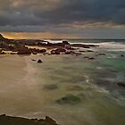 Birdie Beach Sunrise by bazcelt