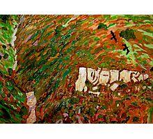 Cahuenga Peak David Olson Photographic Print