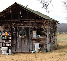 Ye Ole Shack by aprilann