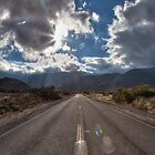 Road, San Diego County by Alexandru Barabas