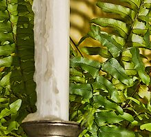 Fern and Candle Stick by Joy  Rector