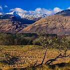 Ben Cruachan by derekbeattie