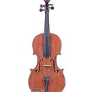 A Violin by Chimpanzee That