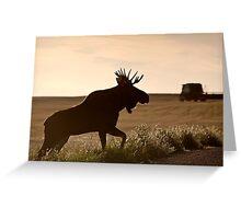 Prairie Moose Greeting Card